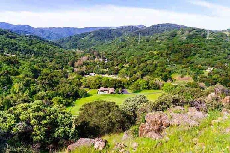 300坪はどれくらいの広さ?価格相場や土地の活用方法も解説