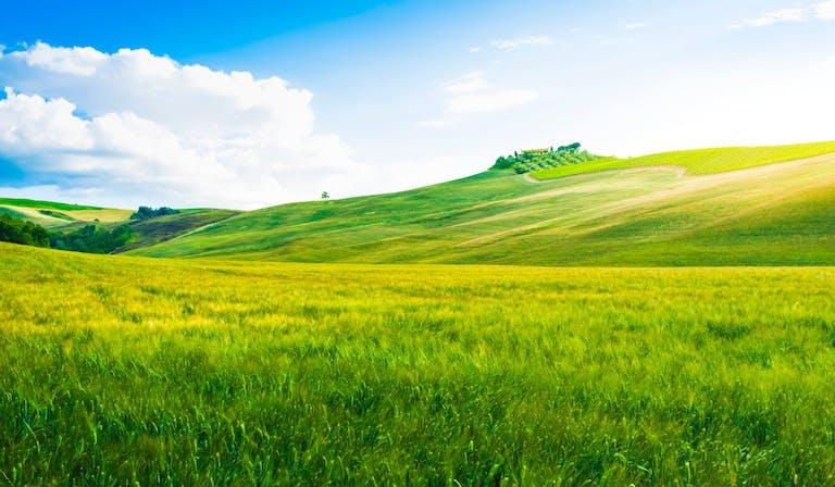 相続した土地の造成費はいくら?計算方法や節約方法について解説