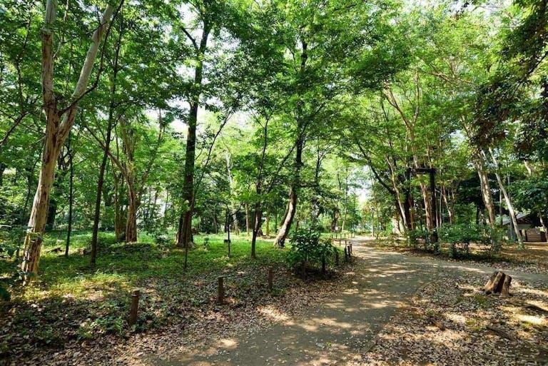 武蔵小山の住みやすさは?都心へのアクセスやおすすめスポット5選